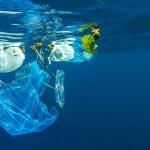 แคมเปญ-งดใช้ถุงพลาสติก-ช่วยลดขยะมากน้อยแค่ไหน